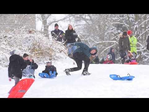 A sledding bonanza has taken over the town of Beccles!