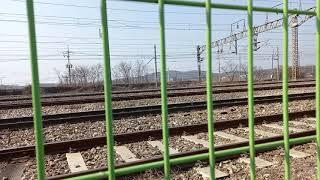 의왕철도박물관 열차포인트 1호선동글이 통과