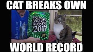CAT BREAKS OWN WORLD RECORD