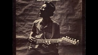 HOUND DOG TAYLOR & HOUSEROCKERS - Hound Dog Taylor And The House Ro...