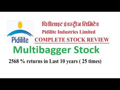 Pidilite Industries Multibagger Stock Pidilite Industries Ltd Full Review Stock For Longterm Youtube