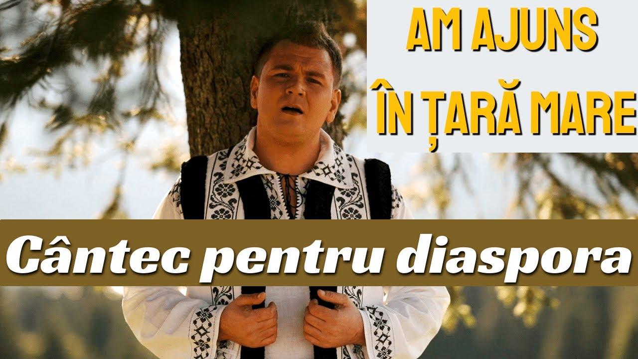Nicu Mâță - Am ajuns în țară mare | Cântec pentru diaspora (Official Video)