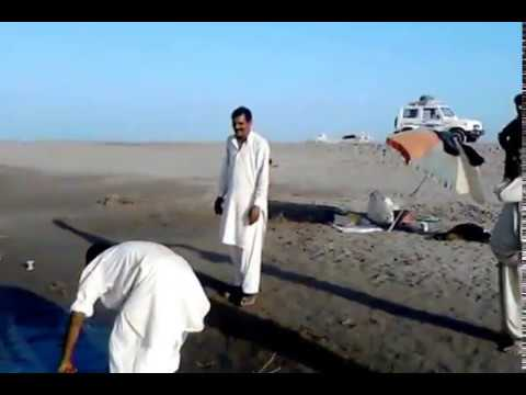 Fishing In Pakistan By KhanGroup (3Kg Mirgal) Jhawarian 2