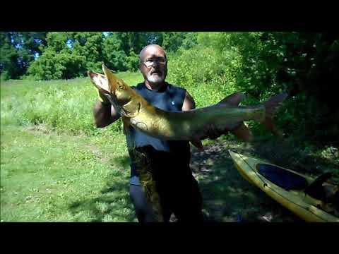 June Fishing At Marsh Creek Lake