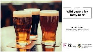 BrisScience (April 2018): Wild yeasts for tasty beer