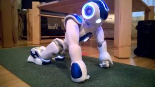 Robot NAO is doing pushup