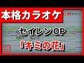 【歌詞付カラオケ】キミの花(奥華子)(セイレンOP)