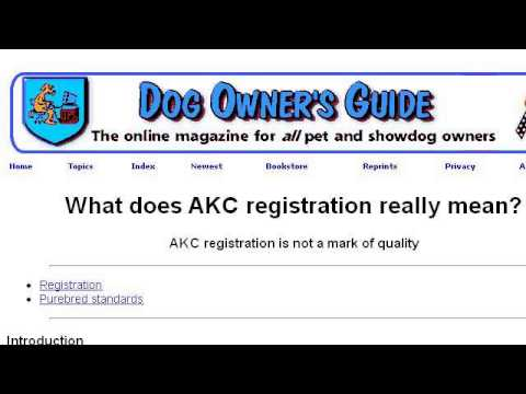 What Does It Mean When A Dog Is AKC Certified? - YouTube