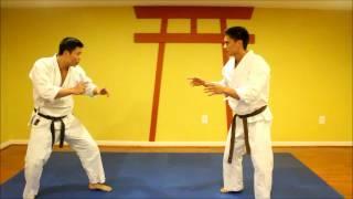 Shorin Ryu Karate applications