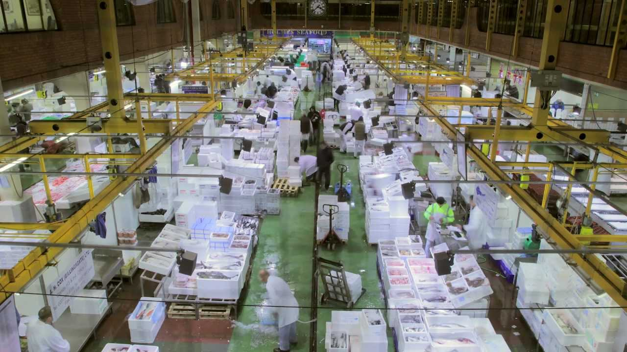Billingsgate fish market youtube for Fish market hours