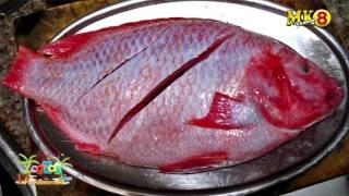 กระชังปลาทับทิม คุณเด่น ปี2559