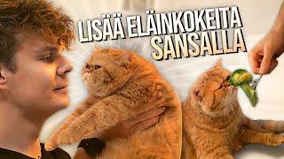 Lisää eläinkokeita Sansalla!