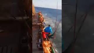 Рыбалка в раю. Fishing in Heaven. Как кормить семью год за одну рыбалку. Прикол