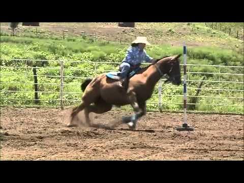 DustGard - Horse Arena Dust Control