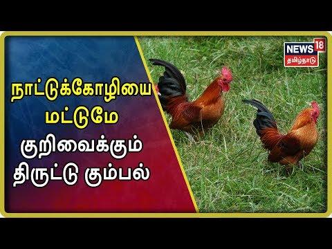 கோபிசெட்டிப்பாளையம் அருகே நாட்டுக்கோழி மற்றும் நாட்டு ஆடுகளை குறிவைத்து திருடும் நூதன திருட்டு கும்பலை கைது செய்ய அப்பகுதி விவசாயிகள் வேண்டுகோள் விடுத்துள்ளனர்.   #Crimetime #க்ரைம்டைம் #TamilnaduNews  #News18TamilnaduLive   #TamilNews   Subscribe To News 18 Tamilnadu Channel Click below  http://bit.ly/News18TamilNaduVideos  Watch Tamil News In News18 Tamilnadu  Live TV -https://www.youtube.com/watch?v=xfIJBMHpANE&feature=youtu.be  Top 100 Videos Of News18 Tamilnadu -https://www.youtube.com/playlist?list=PLZjYaGp8v2I8q5bjCkp0gVjOE-xjfJfoA  அத்திவரதர் திருவிழா | Athi Varadar Festival Videos-https://www.youtube.com/playlist?list=PLZjYaGp8v2I9EP_dnSB7ZC-7vWYmoTGax  முதல் கேள்வி -Watch All Latest Mudhal Kelvi Debate Shows-https://www.youtube.com/playlist?list=PLZjYaGp8v2I8-KEhrPxdyB_nHHjgWqS8x  காலத்தின் குரல் -Watch All Latest Kaalathin Kural  https://www.youtube.com/playlist?list=PLZjYaGp8v2I9G2h9GSVDFceNC3CelJhFN  வெல்லும் சொல் -Watch All Latest Vellum Sol Shows  https://www.youtube.com/playlist?list=PLZjYaGp8v2I8kQUMxpirqS-aqOoG0a_mx  கதையல்ல வரலாறு -Watch All latest Kathaiyalla Varalaru  https://www.youtube.com/playlist?list=PLZjYaGp8v2I_mXkHZUm0nGm6bQBZ1Lub-  Watch All Latest Crime_Time News Here -https://www.youtube.com/playlist?list=PLZjYaGp8v2I-zlJI7CANtkQkOVBOsb7Tw  Connect with Website: http://www.news18tamil.com/ Like us @ https://www.facebook.com/News18TamilNadu Follow us @ https://twitter.com/News18TamilNadu On Google plus @ https://plus.google.com/+News18Tamilnadu   About Channel:  யாருக்கும் சார்பில்லாமல், எதற்கும் தயக்கமில்லாமல், நடுநிலையாக மக்களின் மனசாட்சியாக இருந்து உண்மையை எதிரொலிக்கும் தமிழ்நாட்டின் முன்னணி தொலைக்காட்சி 'நியூஸ் 18 தமிழ்நாடு'   News18 Tamil Nadu brings unbiased News & information to the Tamil viewers. Network 18 Group is presently the largest Television Network in India.   tamil news news18 tamil,tamil nadu news,tamilnadu news,news18 live tamil,news18 tamil live,tamil news live,news 18 tamil live,news 18 tamil,news18 tamilnadu,news 
