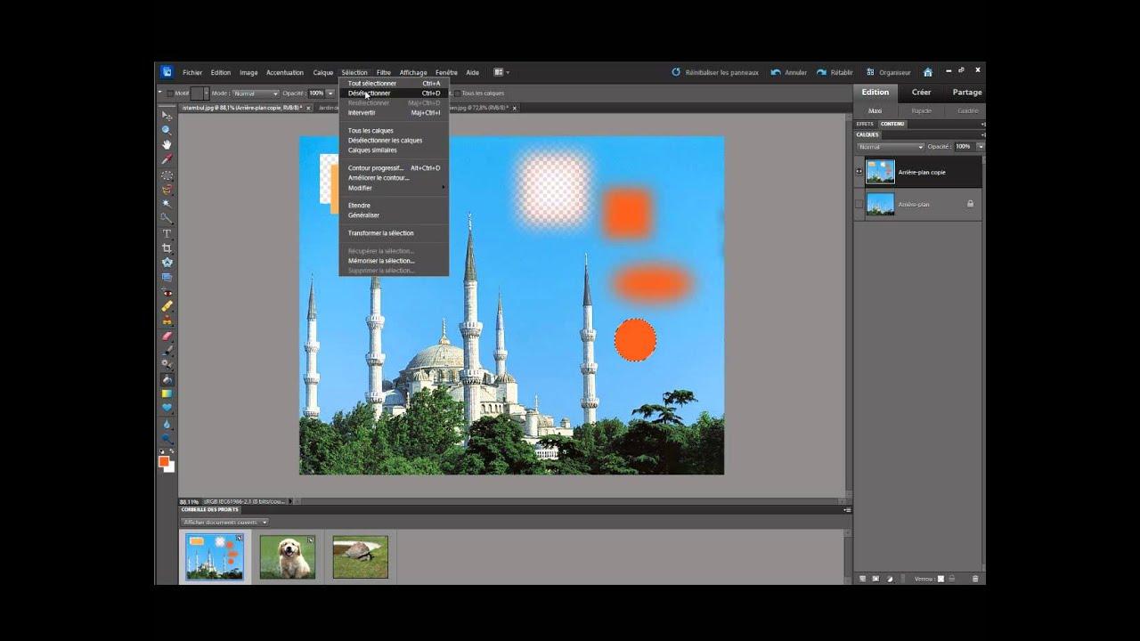Adobe Photoshop Elements - Fotobewerking en -beheer