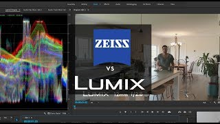 GH5 Lens Test Lumix 12-35mm 2.8ii vs Contax Zeiss Vintage Lenses