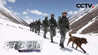 《军事报道》 20190608| CCTV军事