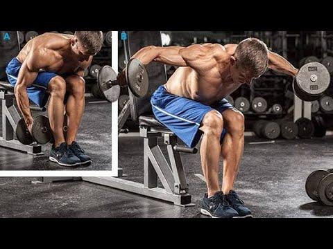Seated Bent-Over Rear Delt Raise (shoulder workout ) - YouTube