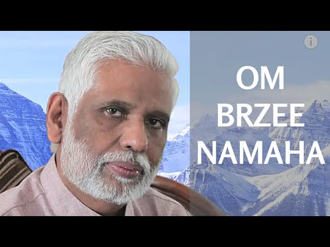 Om Brzee Namaha 108 Times - Chant To Improve Prosperity By Dr. Pillai