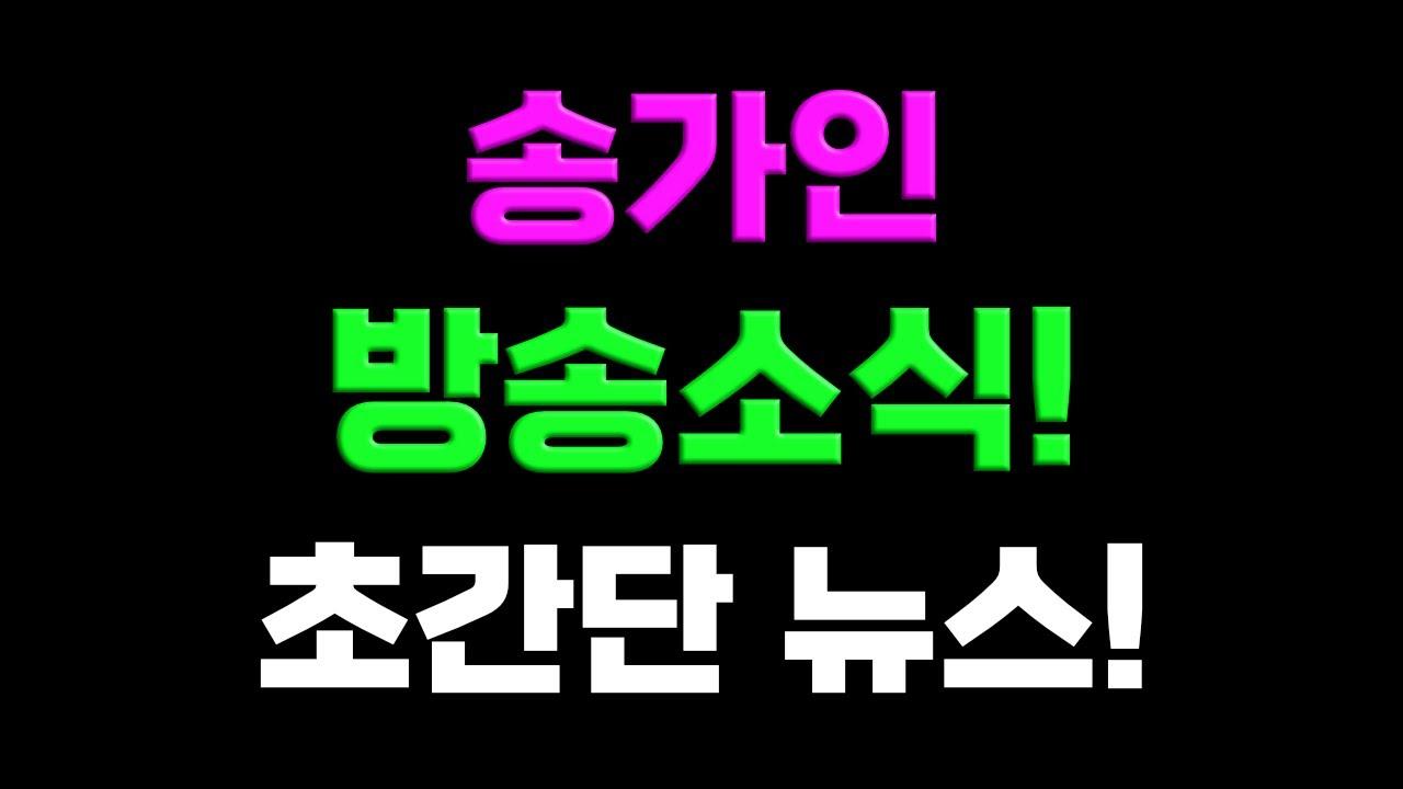 송가인 방송소식! 초간단 뉴스! 트로트닷컴