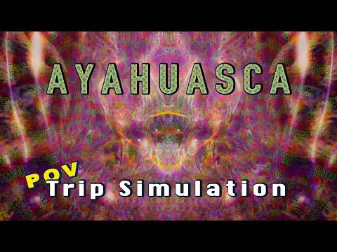 "AYAHUASCA DMT Trip Simulation (POV) | What Ayahuasca ""Looks"" Like"