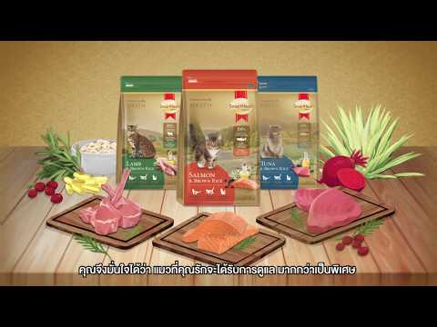 อาหารแมวสมาร์ทฮาร์ท โกลด์ เพื่อการดูแลที่มากกว่าเป็นพิเศษสำหรับแมวที่คุณรัก