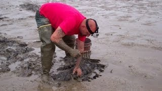 Digging Marine Bloodworms in Maine