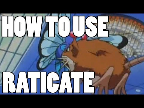 How To Use: Raticate! Raticate Strategy Guide!