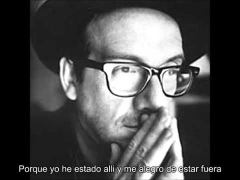 Elvis Costello   I'll never fall in love again Subtitulado
