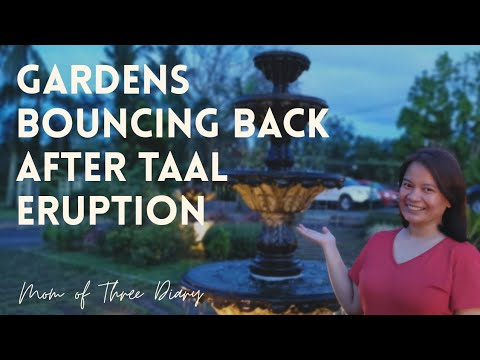 Wide Variety of Indoor & Outdoor Plants, Mura dito Promise! Watch till the End 🤣   Garden Visit #25