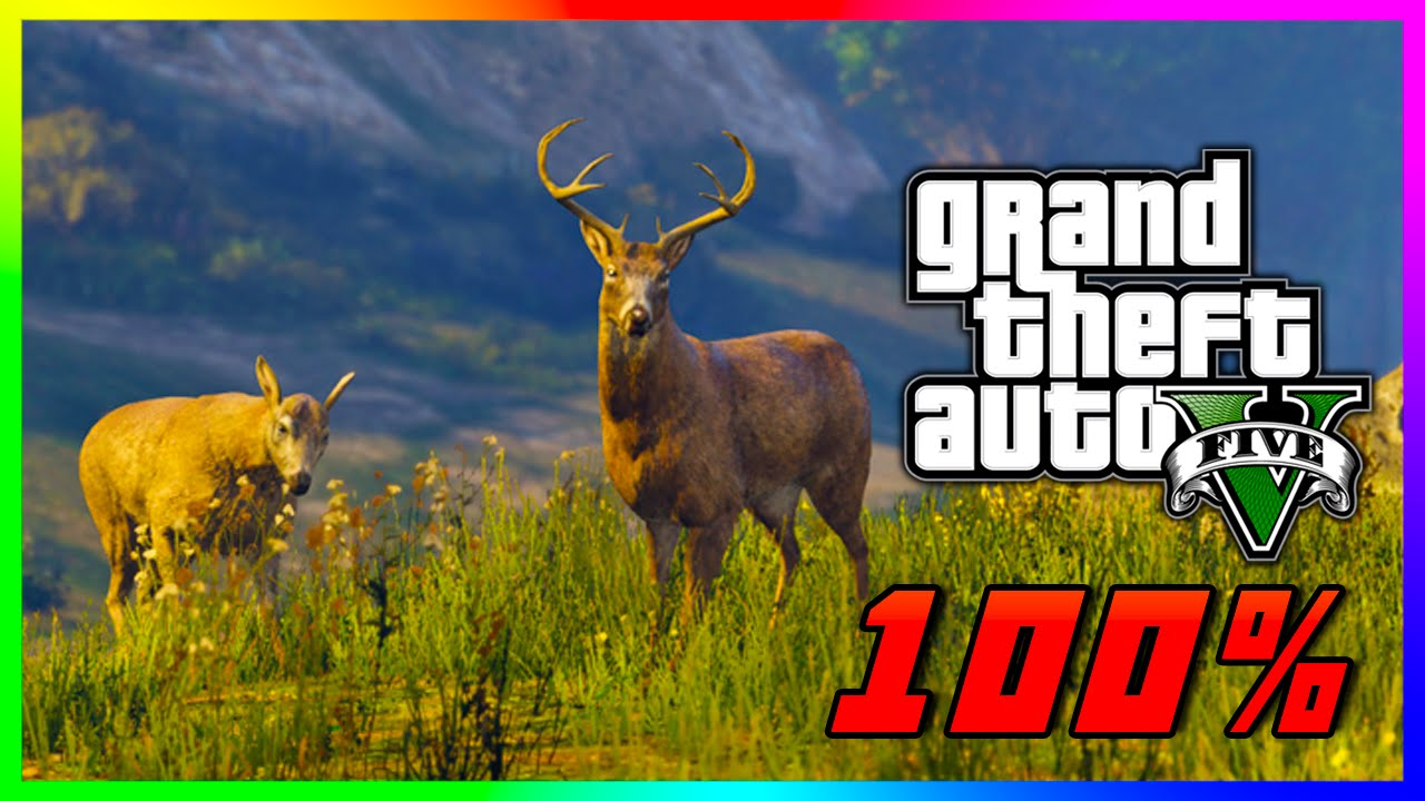 GTA 5 Wildlife Photography Challenge Guide 100% Complete - ALL 20 Animal  Locations! (GTA V PS4) - YouTube