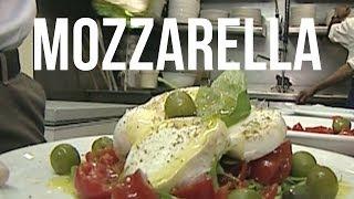 Découvrir la Mozzarella