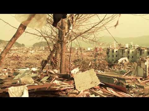 Aftermath of the 2011 Tohoku Earthquake and Tsunami