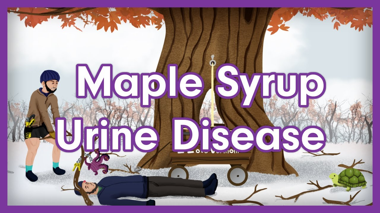 Maple Syrup Urine Disease (MSUD) | USMLE Step 1 Biochemistry Mnemonic