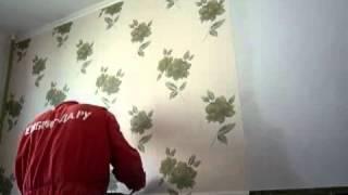 видео Чем отличаются виниловые обои от флизелиновых: разница между покрытиями, какие лучше,  и фото