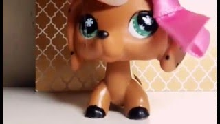 LPS||Juha88|| MV (BY: Candy)