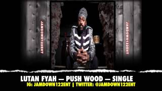 Lutan Fyah - Push Wood - Single [Shiah Records] - 2014