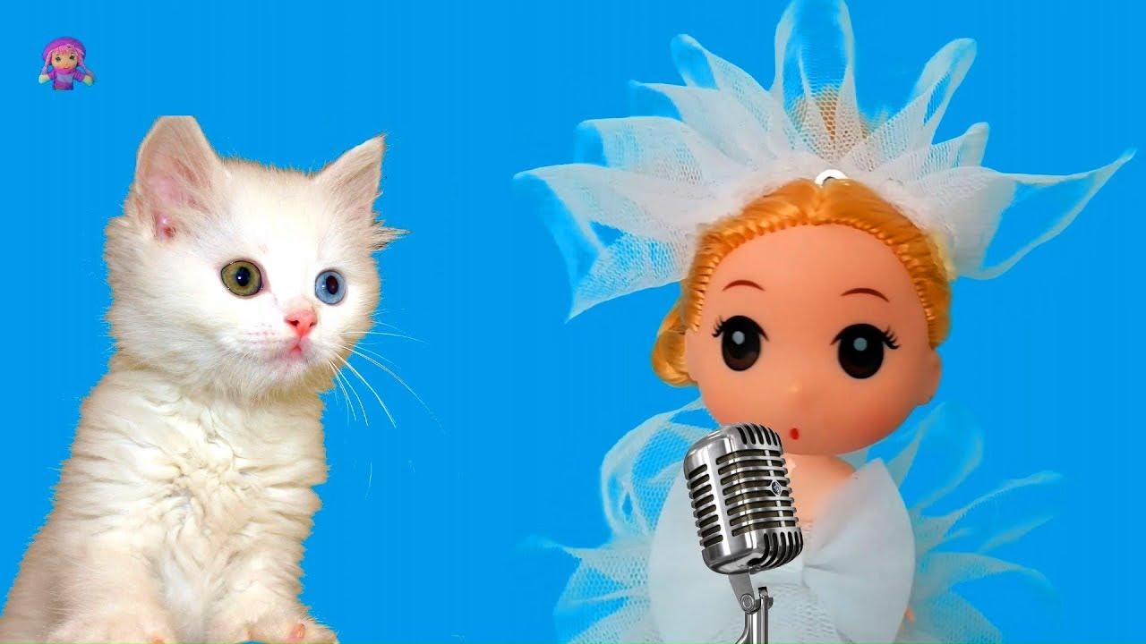 Kediler Hep Miyav Der  - Çocuk şarkıları 2019