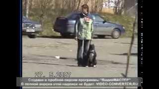 соревнование по КД 2007 г