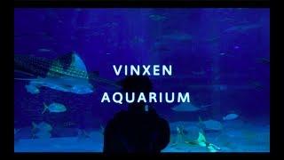 빈첸 VINXEN - 아쿠아리움 Aquarium (가사…