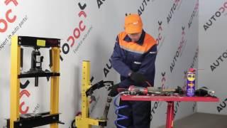Vaizdo vadovai apie HONDA remontą
