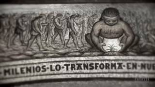 Estalló el Secreto: El Misterioso Origen del Maíz | HHMI BioInteractive Video