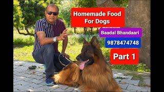 Best Homemade Food For Dogs (Part 1)   By Baadal Bhandaari   Pathankot Punjab 9878474748