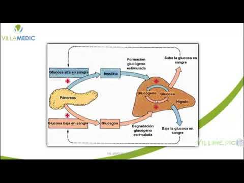 villamedic---diabetes-parte-1