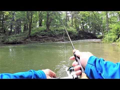 TROUT Fishing With Spinners In BEAUTIFUL Stream