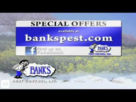 banks-pest-control-|-termite-control-|-bakersfield,-ca