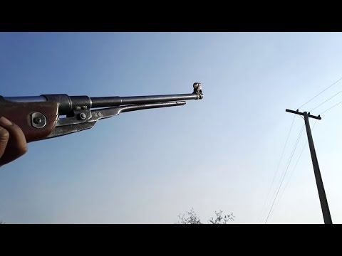 Amazing Moments of Doves Hunting in 2019 Mp3