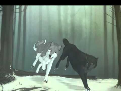 Anime wolf love tribute youtube - Anime wolves in love ...