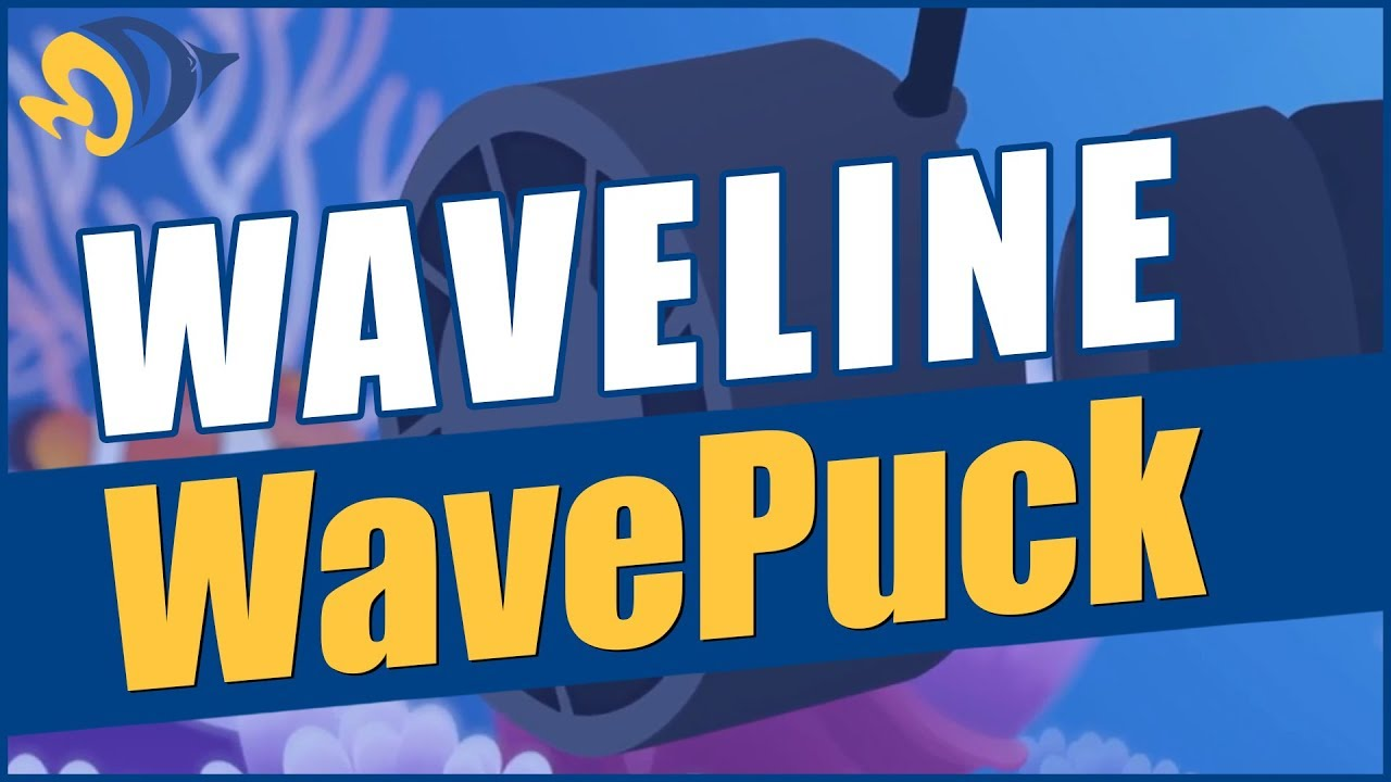 Waveline WavePuck Flow Pump: What YOU Need to Know Thumbnail